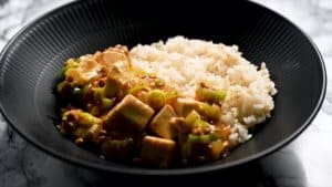 Mabo tofu don