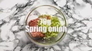 gyoza recipe spring onion