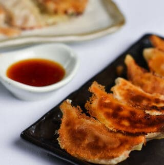 Pan fried Japanese Gyoza Dumplings