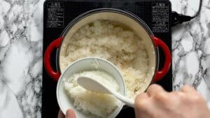 Serving Japanese rice
