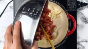 add the onion and beef to the pot
