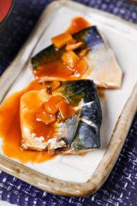 Japanese miso mackerel portrait closeup