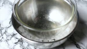 Bowl with ice