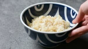 A bowl of rice for donburi