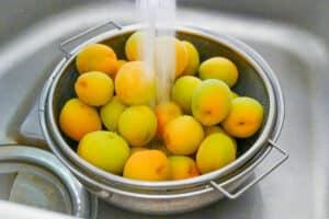 Washing Japanese ume plums