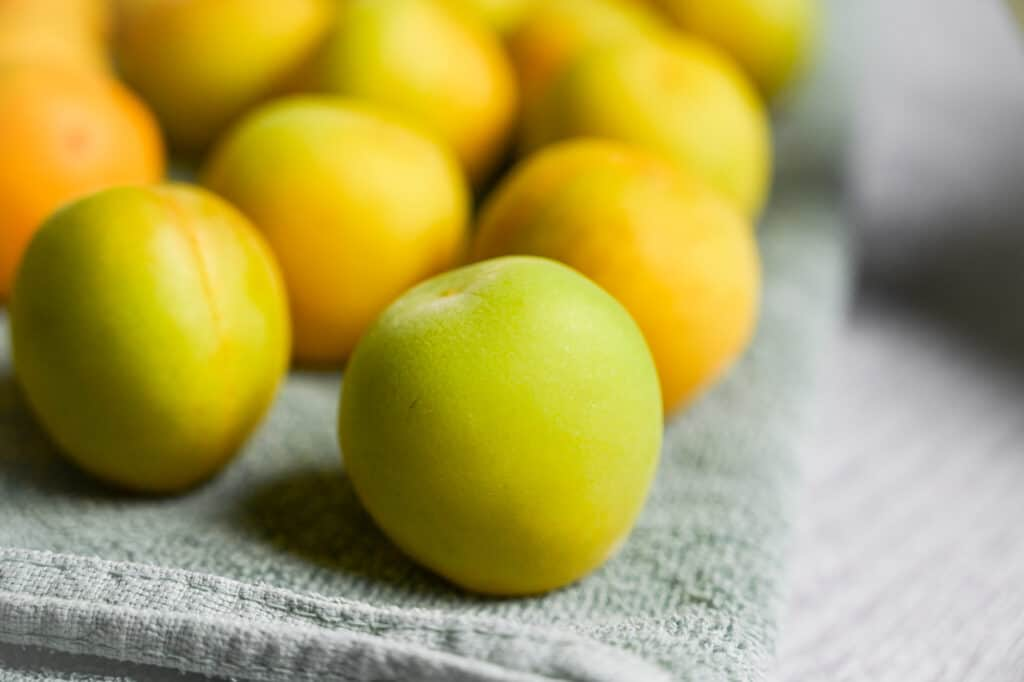Ume drying on a clean towel
